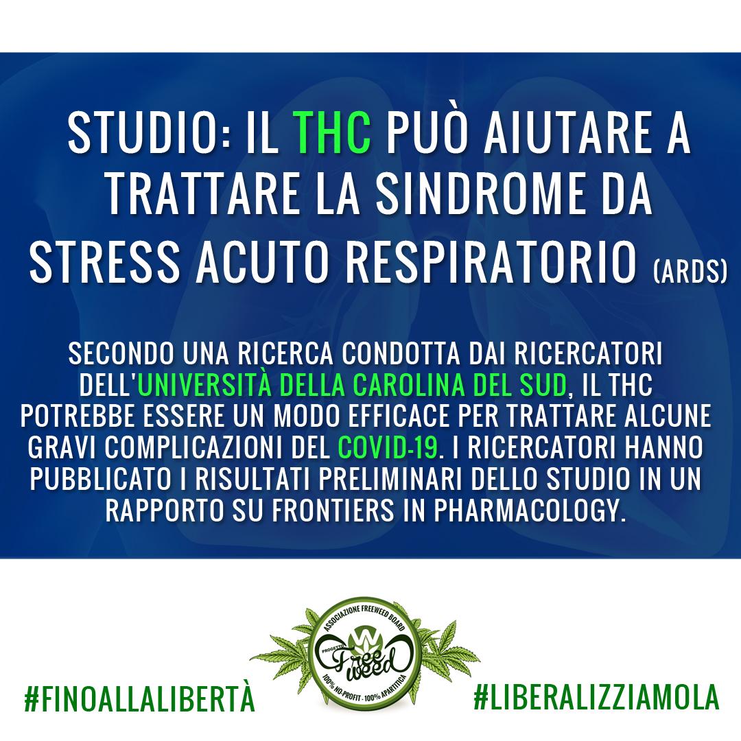 Studio: il THC può aiutare a trattare la sindrome da stress acuto respiratorio provocato da Covid-19